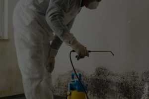 24/7 mold damage repair