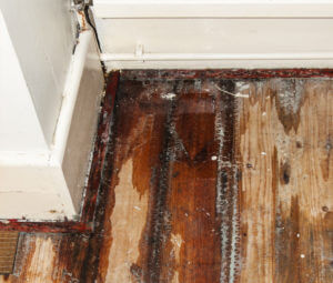 water damage floor repair san diego