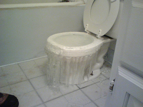 flooded toilet water damage