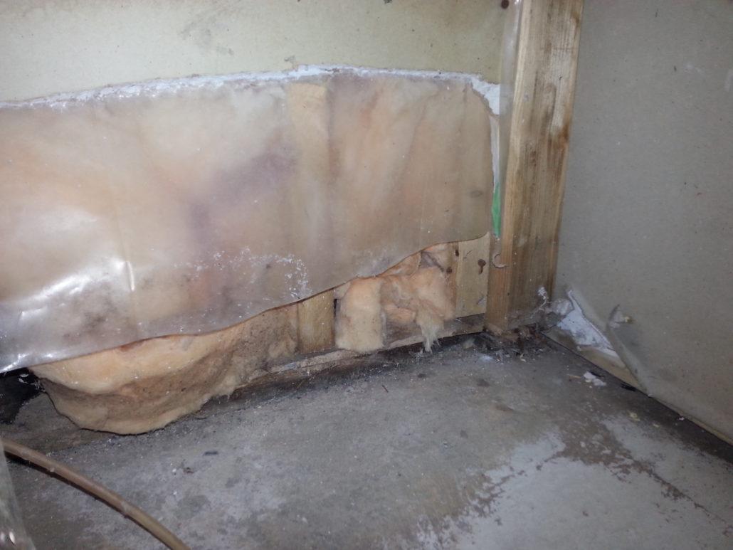 Water Damage Drywall Orange Restoration