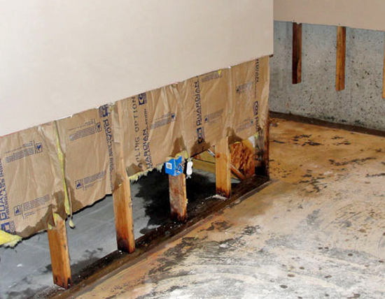 hidden signs of water damage